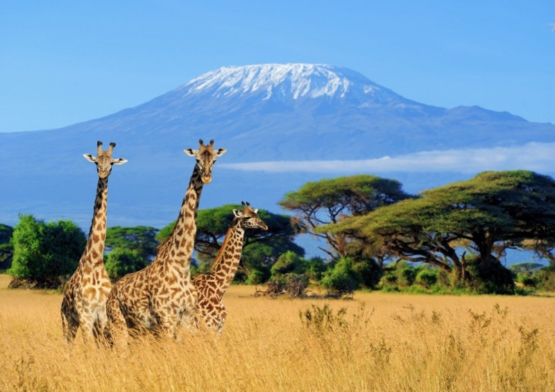 Kilimanjaro Nationalpark