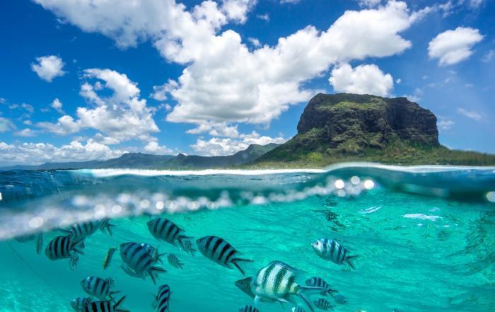 Flitterwochen-Ziel Mauritius