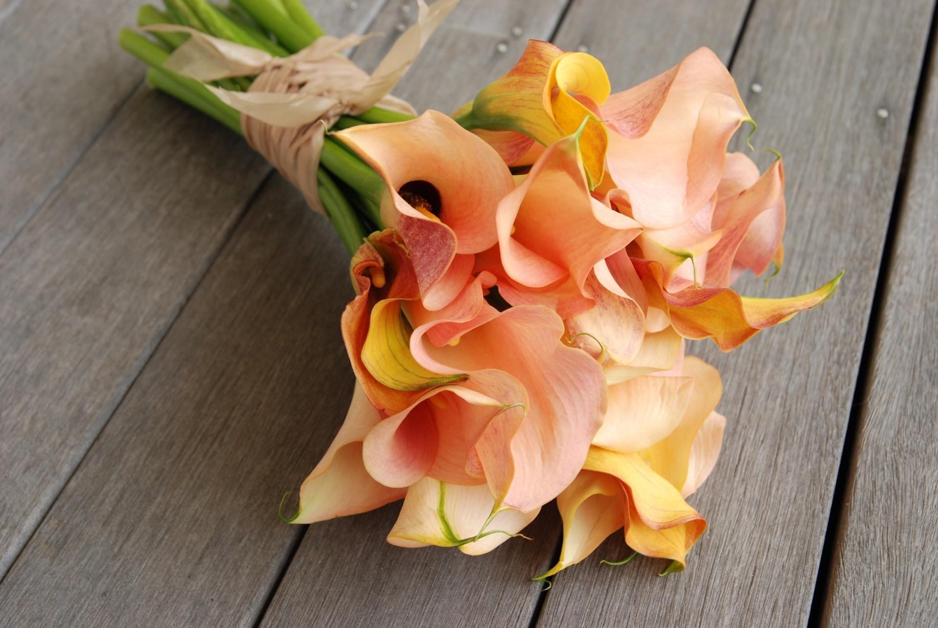Hochzeitsblume Calla
