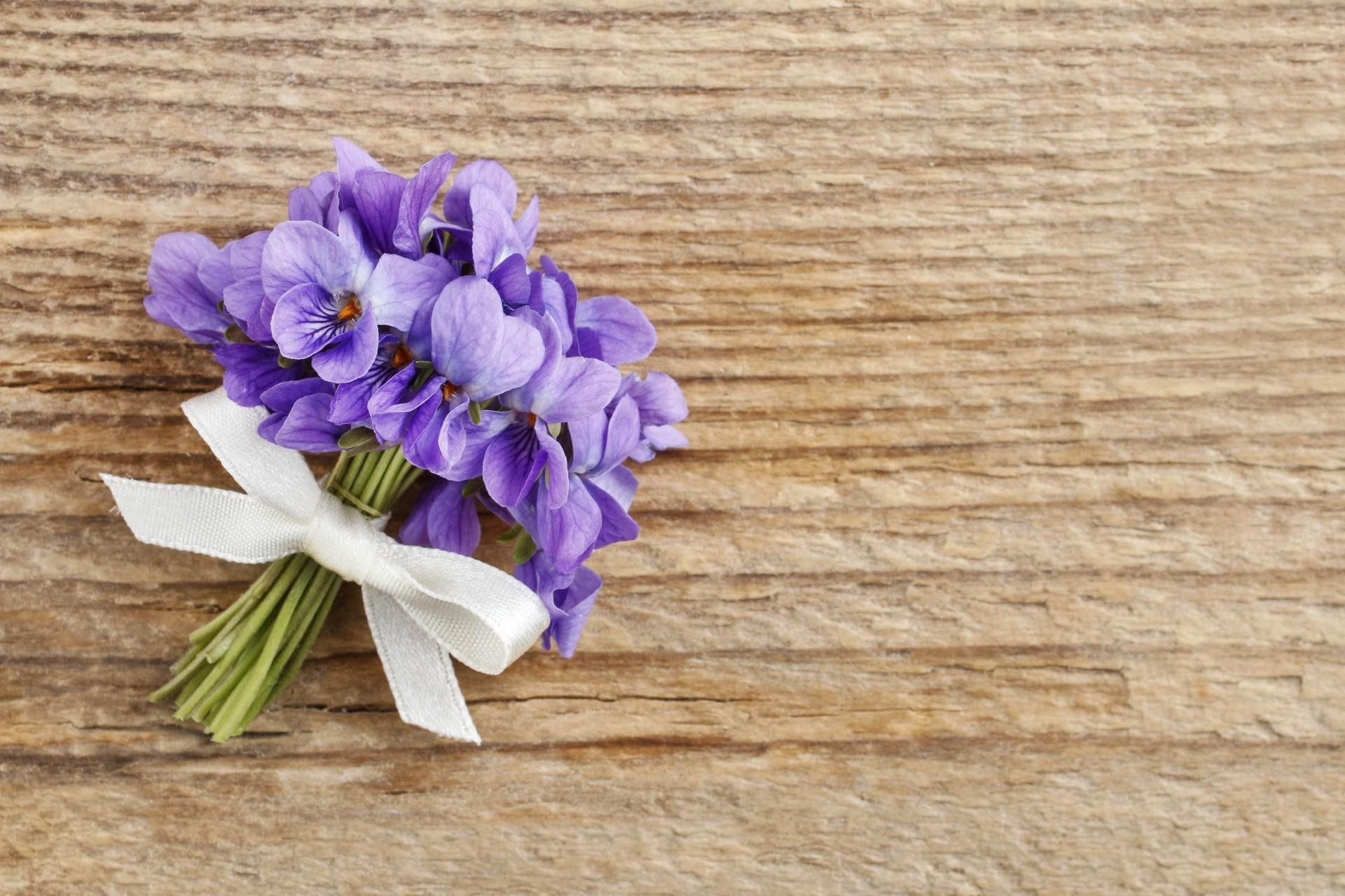 Hochzeitsblume Veilchen