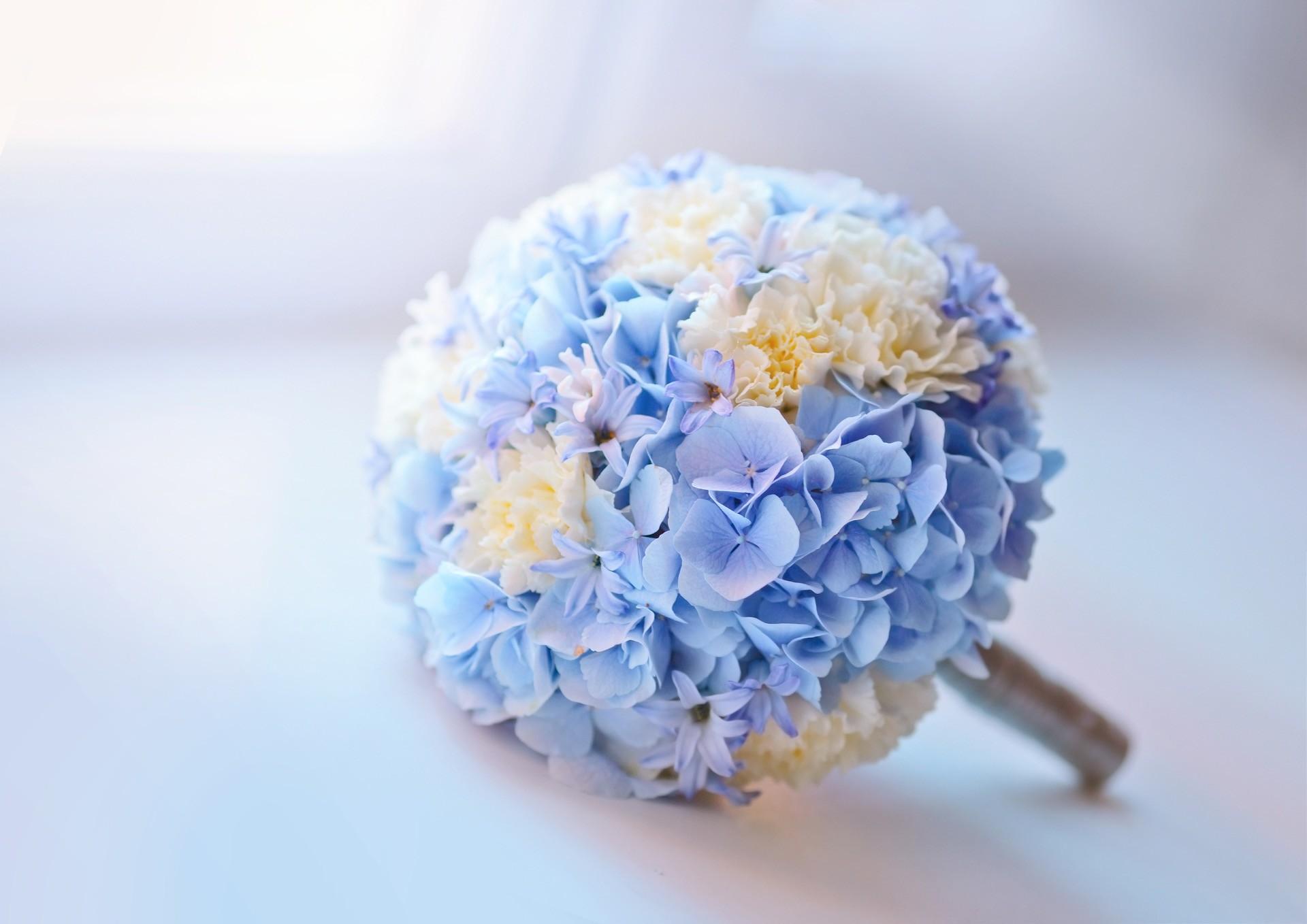 Hochzeitsblume Hortensie