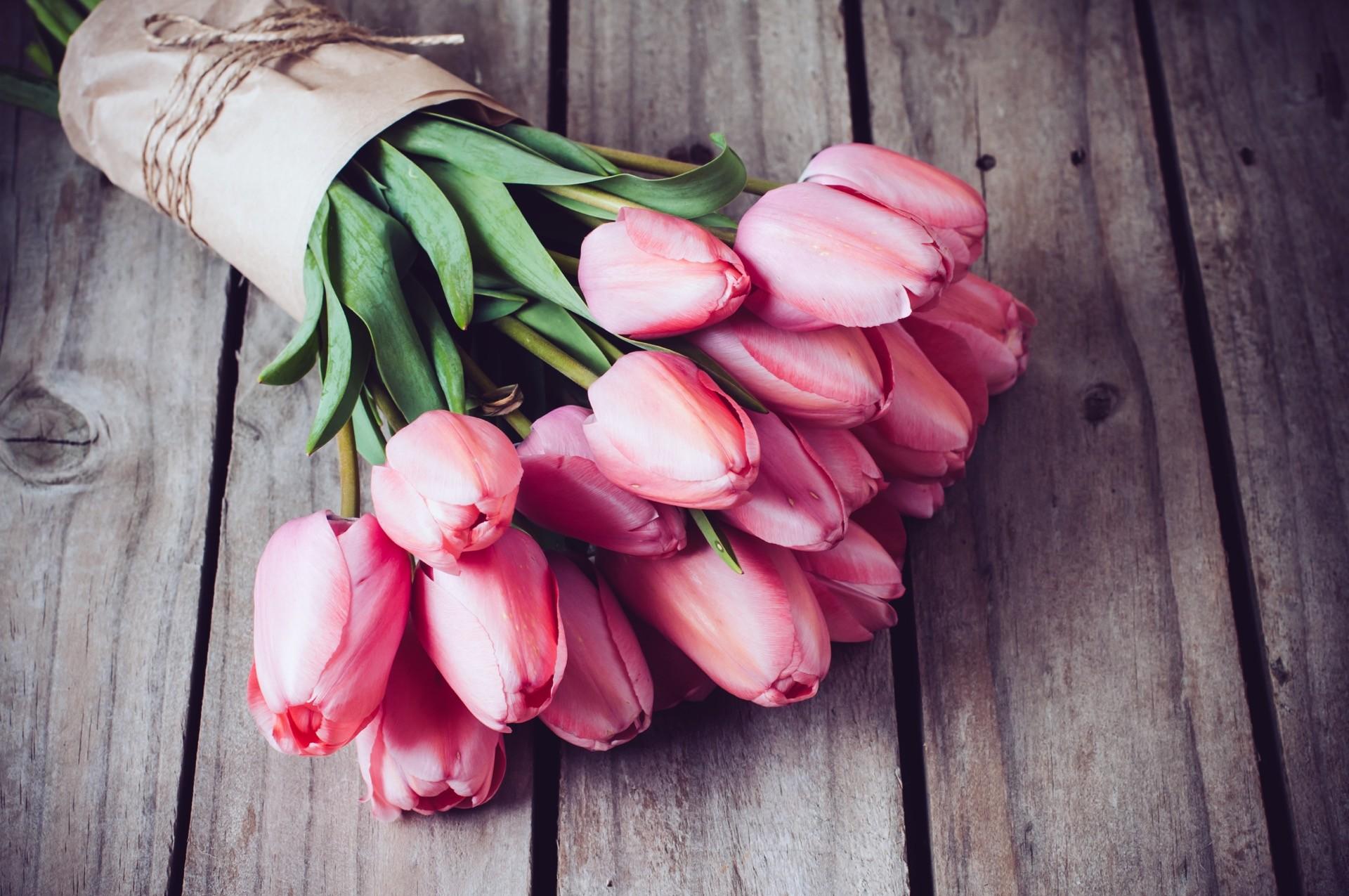 Hochzeitsblume Tulpe