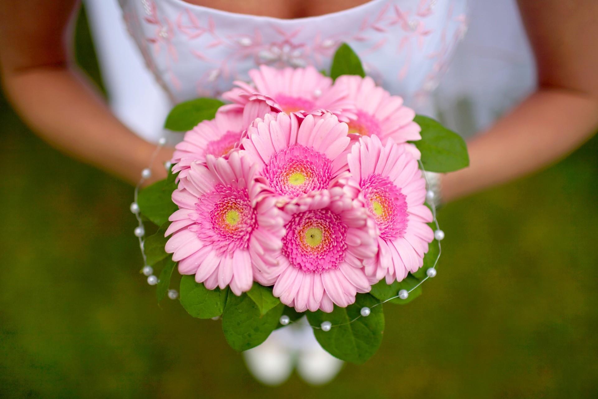 Hochzeitsblume Gerbera