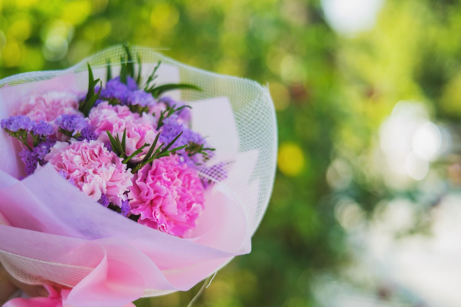 Hochzeitsblume Nelke